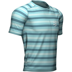Compressport Performance Camiseta Manga Corta, nile blue/stripes